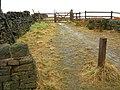The Pennine Bridleway - geograph.org.uk - 1188737.jpg