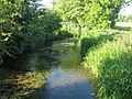 The River Darent near Newbarn Farm - geograph.org.uk - 1333227.jpg