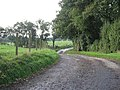 The Track To Peep O' Day Farm - geograph.org.uk - 264450.jpg