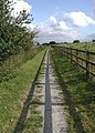 The Trans Pennine Trail, Barmby - geograph.org.uk - 577461.jpg
