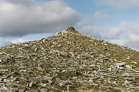 The summit of Geal Charn - geograph.org.uk - 718813.jpg