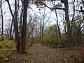 Theodore Roosevelt Island trails (1).JPG