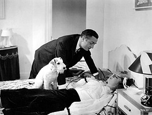 The Thin Man (film) - William Powell, Myrna Loy and Skippy (Asta) in The Thin Man