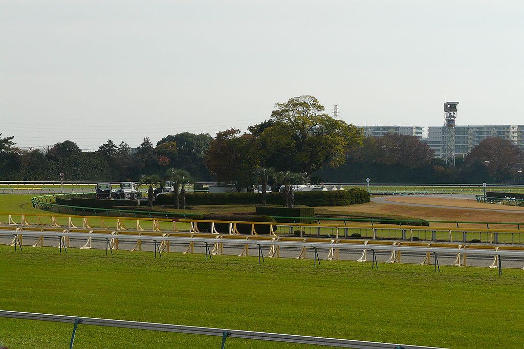 https://upload.wikimedia.org/wikipedia/commons/thumb/4/4d/Tokyo-Racecourse-07.jpg/1024px-Tokyo-Racecourse-07.jpg