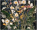 Tom Thomson, Canadian Wildflowers.jpg