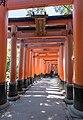 Torii at Fushimi Inari-taisha, Kyoto 20190416 1.jpg