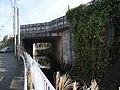 Torizono bridge.jpg