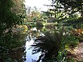 Torosay Castle, Water Garden - geograph.org.uk - 270880.jpg