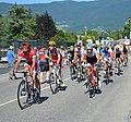 Tour de France 2016, étape 15 - Culoz (30).JPG