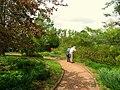 Tower Hill Botanic Garden - pathway.jpg