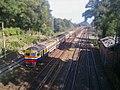 Train (9762487173).jpg