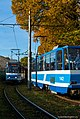 Trams in Tallinn.jpg