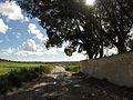Triq L-Imdina, Ħ'Attard, Malta - panoramio (85).jpg