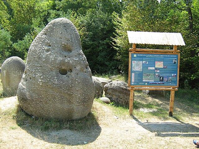 http://upload.wikimedia.org/wikipedia/commons/thumb/4/4d/Trovant_at_Costesti_in_Romania.JPG/640px-Trovant_at_Costesti_in_Romania.JPG