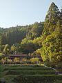 Tsukudemoriyoshi, Shinshiro, Aichi Prefecture 441-1401, Japan - panoramio (3).jpg