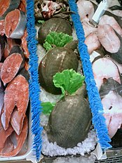 photo of turtles on sale as food in a shop
