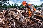 USAID Measuring Impact Conservation Enterprise Retrospective (Guatemala; Rainforest Alliance) (39407072885).jpg