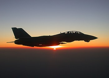 US Navy 020808-N-1955P-001 An F-14 Tomcat figter jet in-flight over Afghanistan.jpg