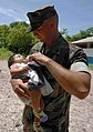 US Navy 090629-N-6259S-004 Master-at-Arms 2nd Class Patrick Lemming holds a child from a village on Perico, a remote El Salvadoran island of 30 families.jpg