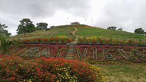 Ubay, Bohol - Ubay Green Park, Imelda