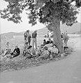 Uitstapje van jeugd uit een kibboets Een groepje jongeren in de schaduw van een, Bestanddeelnr 255-4488.jpg