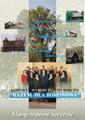 Ulotka wyborcza Gmina Boronów 2006.png
