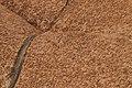 Uluru (15177079565).jpg