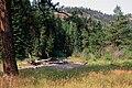 Umatilla Nat'l Forest, Grande Ronde River, stream habitat restoration (36878554295).jpg
