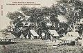Un campement en tournée d'inspection dans le Kouango.jpg