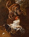 Victors Fight between a rooster and a cat.jpg