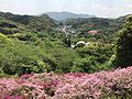 View from Azalea Valley in Mifuneyama Garden 1.jpg