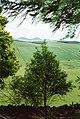 View near Calfshaw - geograph.org.uk - 635626.jpg