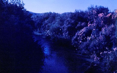 View to nord from Arik bridge a jordan river 01.jpg