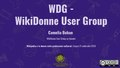 WDG - WikiDonne User Group.pdf