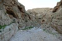 Wadi-Makukh-657.jpg