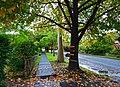 Waimea Road, Lindfield, New South Wales (2011-04-28) 04.jpg