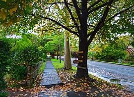 Waimea Road, Lindfield, New South Wales (2011-04-28) 04