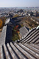 Wakayama castle05s3200.jpg