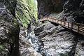 Walkway in wild canyon (25395724020).jpg