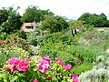 Walled Garden, Botton Hall.jpg