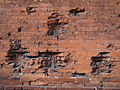 War-Damaged Wall - Outside Ludwig-Maximilians-Universitat - Munich - Germany.jpg