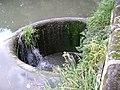 Warwick Castle Park, circular weir - geograph.org.uk - 1183463.jpg
