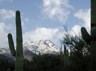 Tucson Mountains - Image: Wasson