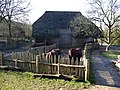 Weald and Downland Museum Singleton - geograph.org.uk - 1160556.jpg