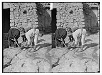 Weli of Budrieh at Sherafat and the preparing of a sacrifice. Collecting the blood for ritual purposes LOC matpc.06357.jpg