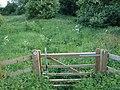 Well trodden path.... - geograph.org.uk - 441623.jpg