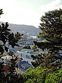 Wellington Harbour from Mount Victoria.JPG