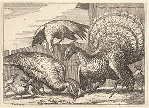Wenceslas Hollar - Turkeys