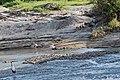 Western Serengeti 2012 06 03 3717 (7557815102).jpg