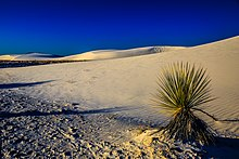 White Sands National Monument - New Mexico - dawn in the desert - a new day begins - cool at first, but soon - !!! (18102078851).jpg